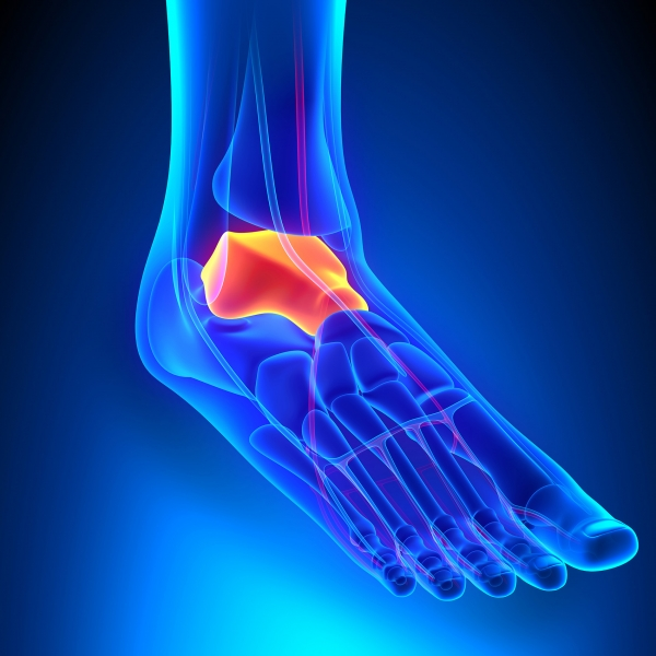 How Feet Ankles Are Affected By Rheumatoid Arthritis Family Foot Ankle